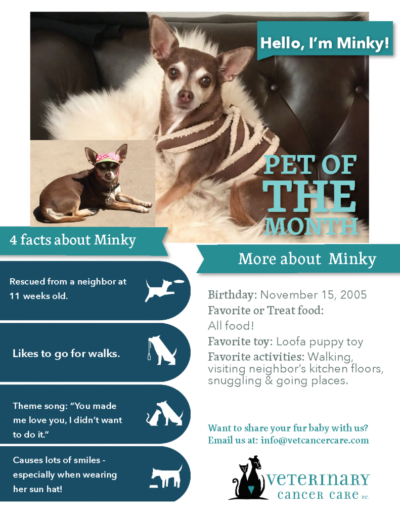 Pet of the Month Minky